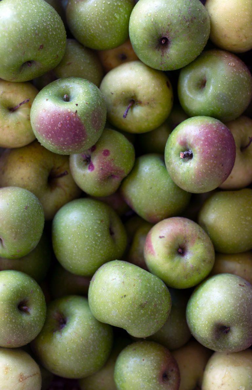 Tempo di mele